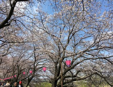 0417熊谷センター